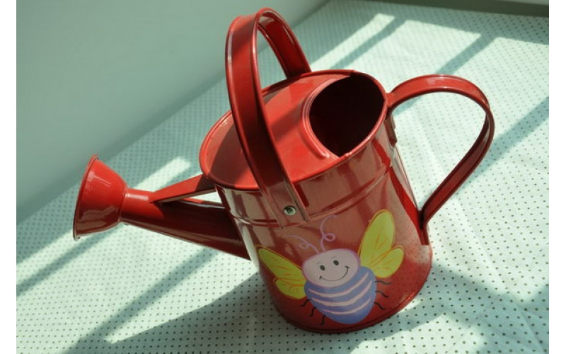 Kids watering can